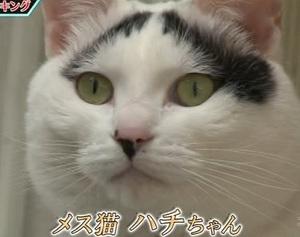 宝くじ必勝裏技ランキング4位